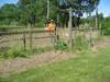 Kurt_fence_2